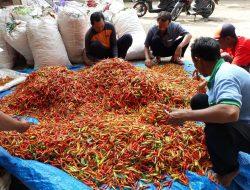 Kementan Gerak Cepat Selamatkan Harga Cabai Rawit di Tuban