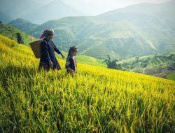 Akademisi: Sudah Saatnya Ada Kemenko Agraria
