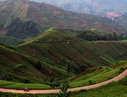 Banyak Desa Andalkan Sektor Wisata untuk Bangun Perekonomian