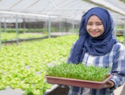 Wow, Agroteknologi Jadi Jurusan Favorit Kaum Milenial