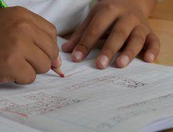 Sekolah Ini Bakal Ciptakan Petani Milenial Handal