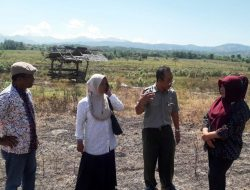 Sulteng Semangat Tambah Areal Tanam Pajale Pasca Gempa dan Likuifaksi
