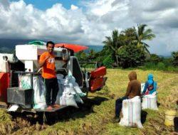 Bahtiar Mantap Jadi Petani Milenial, Sebulan Penghasilan Bersih Rp 30 Juta