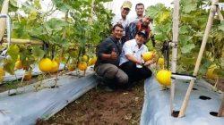 Keren, Mantan Preman Sukses Jadi Petani di Pinggiran Ibu Kota
