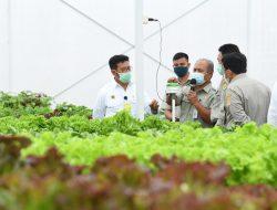 Tingkatkan Kualitas Pendidikan Vokasi Pertanian, Kementan Launching Smart Green House
