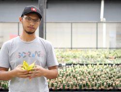 Kisah Sukses Aldy Ridwan Budidayakan Kaktus, Tinggalkan Dunia Migas, Penghasilan Ratusan Juta