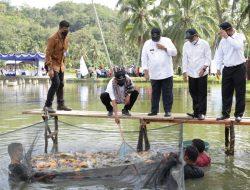 Kementerian KKP Melalui BRSDM Ikan Mas Super Tahan Penyakit Bernama 'Mustika'