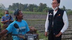 Motor Penggerak Pertanian di Daerah, Ribuan DPA/DPM Segera Dikukuhkan
