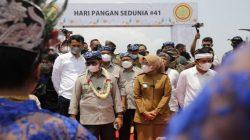HPS ke 41, FAO Apresiasi Capaian Pembagunan Pertanian di Masa Pandemi