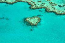 heart-1492445_1280.jpg